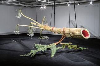 "Yokohama Triennale 2020 ""Afterglow"", installation view"