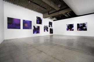 Masahito Koshinaka : double word, installation view