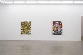 Josh Jefferson: Jabberwocky, installation view