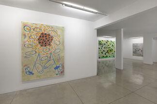 Bruno Dunley: No Meio, installation view