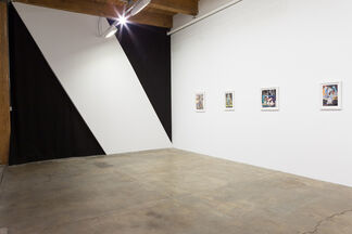 Michael Robinson: Mad Ladders, installation view