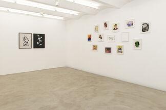 Paper Plains, installation view