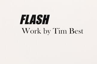 FLASH, installation view