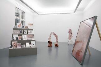 Rachel de Joode - The Molten Inner Core, installation view