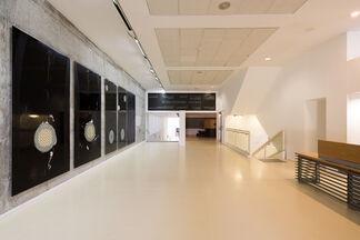 Talia Sidi: Five Works, installation view