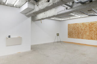 """Alex Ayed """"Pathetic Fallacy"""", installation view"""