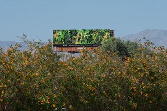 Manifest Destiny Billboard Project Chapter 9: Zoe Crosher, installation view