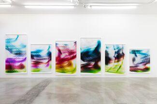 Mariah Robertson: The Hydra, installation view