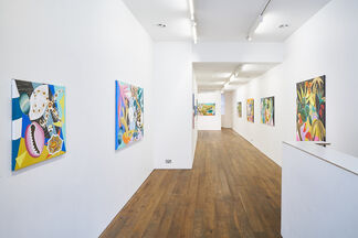 Alexandra Haynes - The Shapes of Nature, installation view