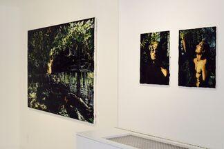 Michelle Rogers: Tender Alchemy, installation view