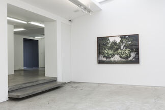 SIMBIOSE SIM | Andre Nacli, installation view