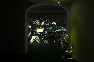En Plein Air | Pascual Sisto, installation view