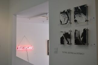LIBERATION by Karen Bystedt & Scarlet Mann, installation view