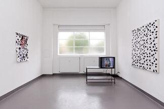 Soft Laminate, installation view