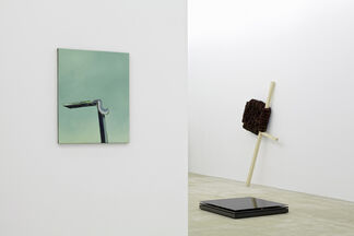 Mean What You See, installation view