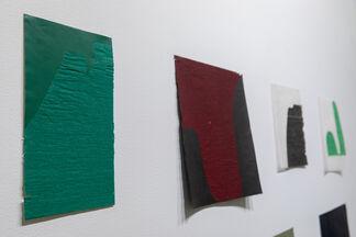 Allyson Strafella -- A Delicate Mark, installation view