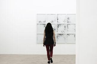 """Christine Maigne """"in vitro"""", installation view"""