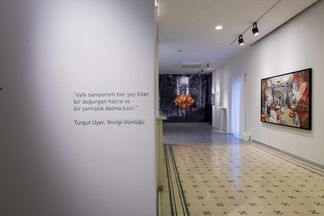 Diary of Defeats, installation view