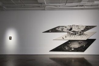An Obscure Reply, installation view