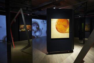 """MACROREALISM"" SOLO EXHIBITION OF YURI GERMAN, installation view"
