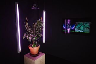 SUPERCONDUCTION: challenge of art & technology, installation view