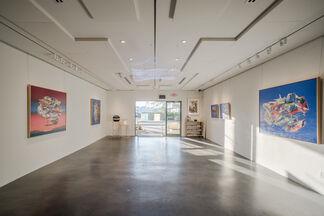 Hugh Davies, installation view