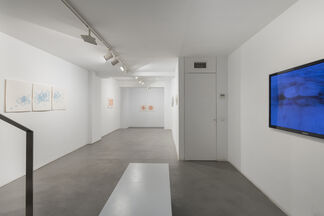 Fugitive, installation view