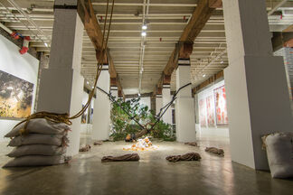 The Murmur of Pines - The Flush of Flowers, installation view