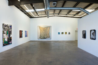 Through Thick and Thin, installation view