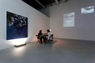 Voleur (thief)- Jamilah Sabur & Andy Robert, installation view