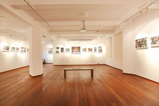 Disappearing Professions of Urban India, installation view