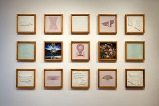 THE PROPELLER GROUP: THE HISTORY OF THE FUTURE, installation view