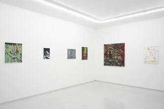 Koji Nakazono, installation view