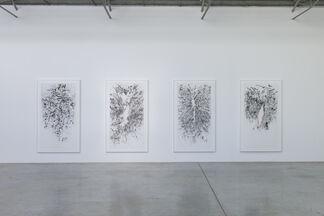 Julie Mehretu: The Mathematics of Droves, installation view