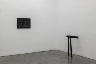 TONI SCHMALE, installation view