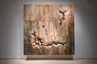 Henrique Oliveira, installation view