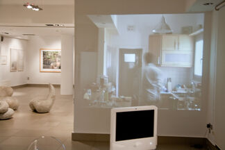 Fugitive Tendencies, installation view