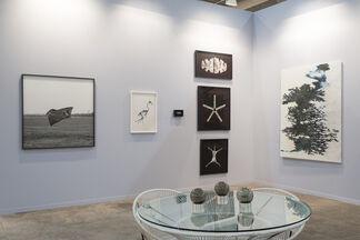 DITTRICH & SCHLECHTRIEM at ZⓢONAMACO 2017, installation view