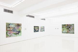 Maiju Salmenkivi: Overlook, installation view