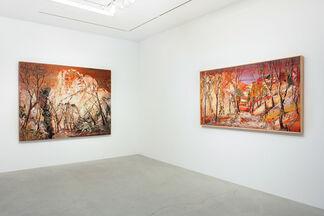"Yin ZhaoYang 尹朝陽  ""Panorama 江湖"", installation view"