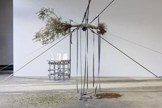 Siobhán Hapaska, installation view