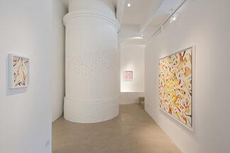 Isabella Nazzarri | Vita delle forme, installation view