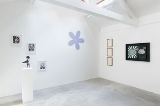Wild Flowers (wildness is contextual!), installation view