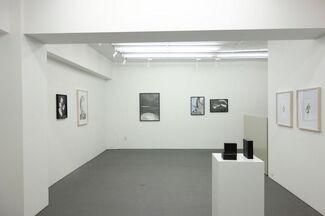 Solo Exhibition by Éi Kaneko, installation view