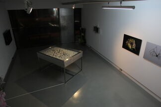 「Lightness Of The Soul」-Ding-Yeh Wang 's solo exhibition, installation view