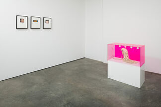 Shapeshifters: curated by Tim Goossens, installation view