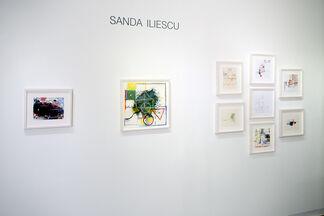 Sanda Iliescu In the Garden of (plastic) Paradise, installation view