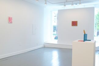 WHATEVER IT IS I HAVE LOOKED FOR, installation view