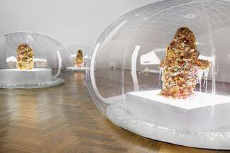 Anicka Yi, 7.070.430K of Digital Spit, installation view
