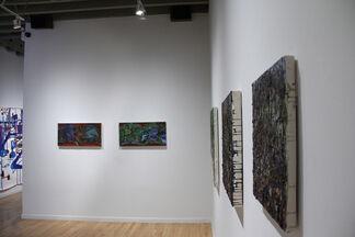 """Colin Muir Dorward """"Onward Cirri Mould"""", installation view"""